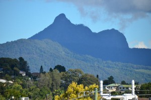 mt_warning600